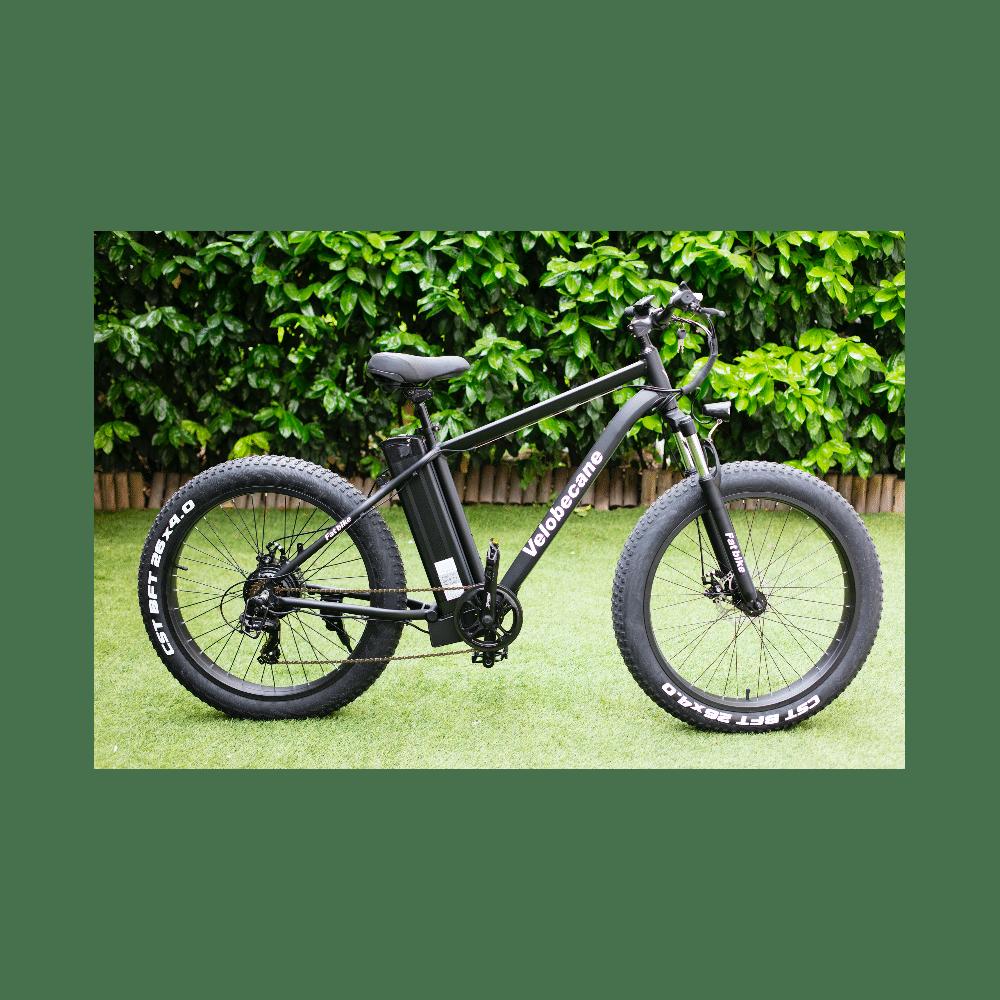 velobecane-fatbike-1
